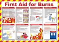 Safety Poster - First Aid for Burns Laminated Poster