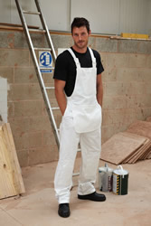 Dickies Painters' Bib And Brace